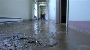 Flood and Sewage Cleanup Oak Park IL