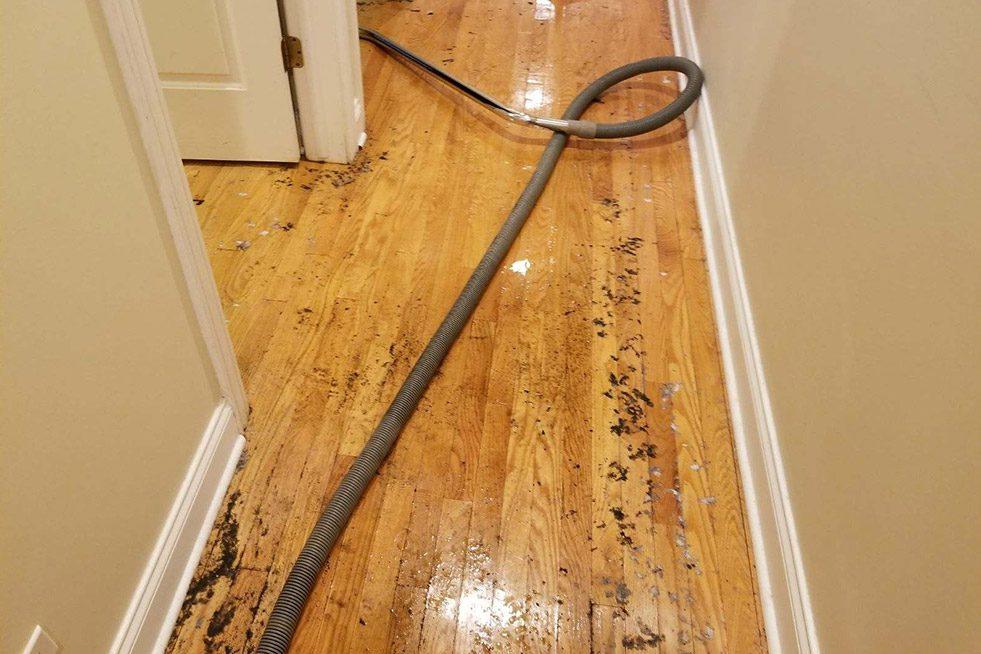 Water restoration services on hardwood floor.