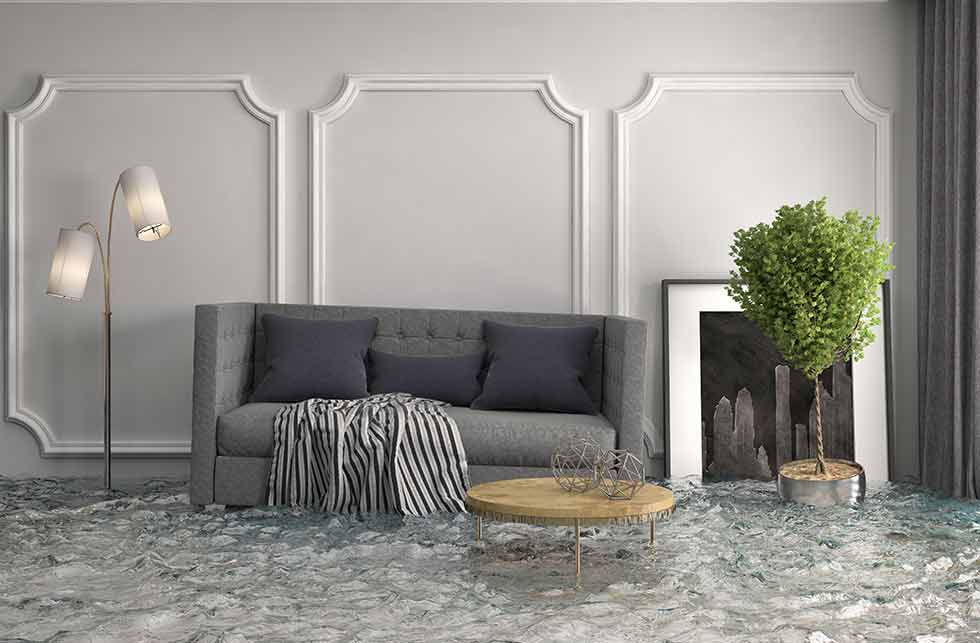 Flooded living room with couch, lamp, table, tree, and mirror