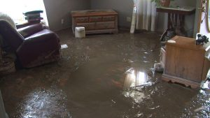 Northbrook Sewage Water Damage