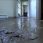 Water Damage Restoration Contractor