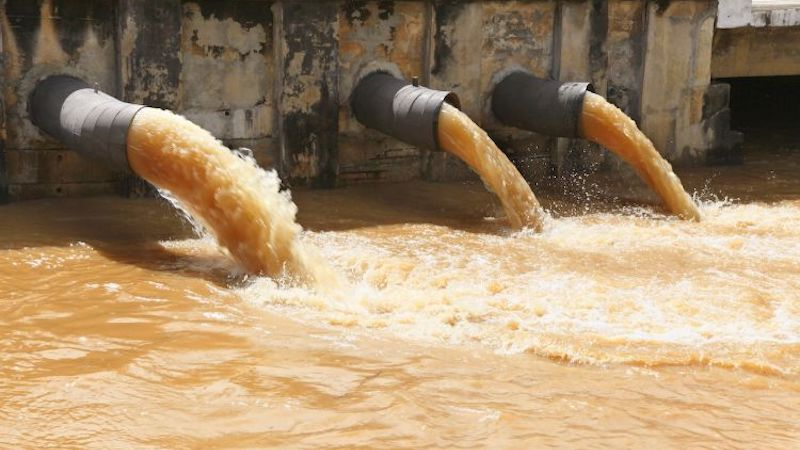 Sewage Damage Cleanup in Dorr, IL (8107)