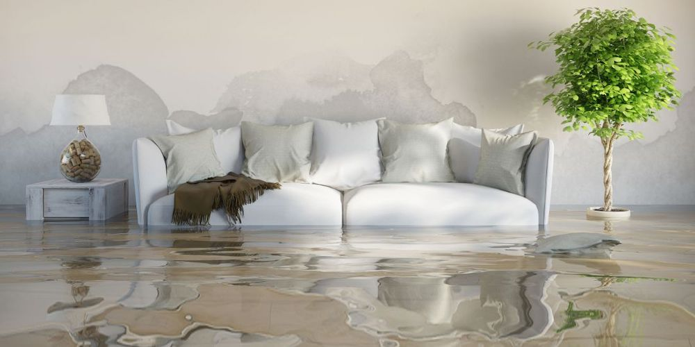 Water Damage Restoration in Northfield, IL (1267)
