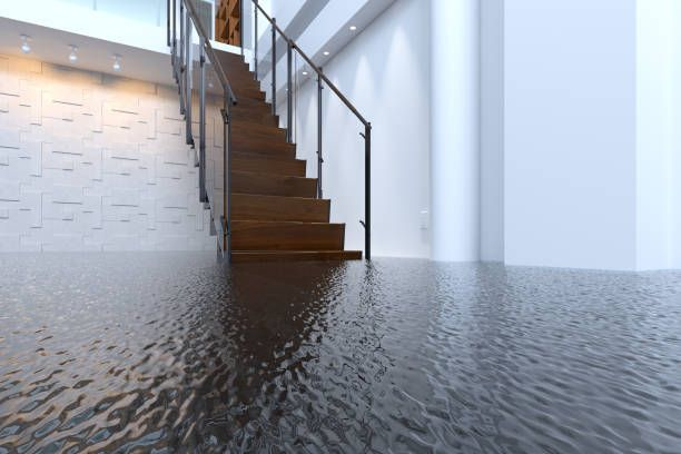 Water Damage Cleanup in Coral, IL (8784)