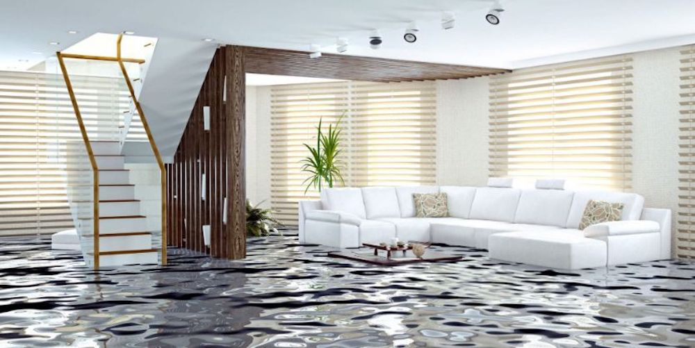Water Damage Restoration in Wayne (Township), IL (6706)