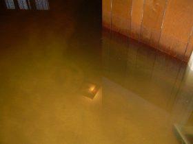 Arlington Heights Water Damage